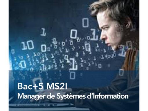 Manager de Systèmes d'Information & d'Infrastructures